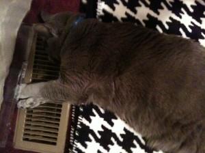 Heat Miser!