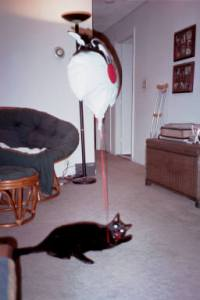 Mackenzie playing with a balloon in one of our first apartments.