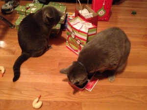 While opening Christmas presents, they want to see if the other one got something better.