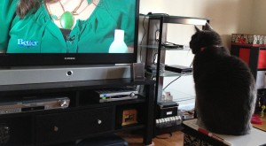 Molly watching the fashion segment of a morning talk show.
