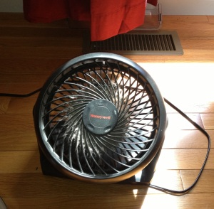 The fan is pulling in some fall-like breezes into the house. So fresh and clean smelling!