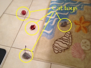 Cat toys in the bathroom.